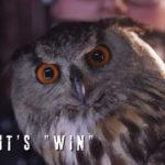 """BEAUnz (@Unbreakable_beaunz) & PradaG (@_pradag_)  - """"Not IF it's WIN"""""""